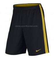 Nike Dry-FIT Academy Hose